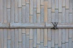 Wysuszony bambusa ogrodzenia tło Obrazy Royalty Free