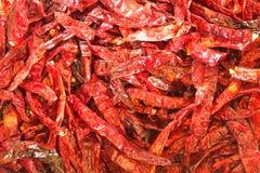 Wysuszony chili Zdjęcie Royalty Free