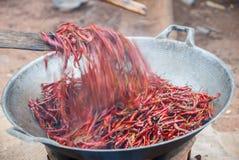 Wysuszony chili oparzenie Fotografia Royalty Free