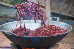 Wysuszony chili oparzenie Zdjęcia Stock