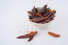 Wysuszony czerwony chili lub chili Cayenne pieprz odizolowywający na białym backg Obrazy Royalty Free