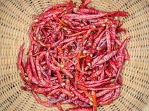 Wysuszony czerwony chili pieprz w koszykowym wyplata Obraz Stock