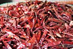 Wysuszony czerwony chili w koszu dla bubla Fotografia Royalty Free