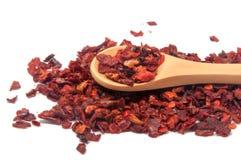 Wysuszony dzwonkowy pieprz lub paprica czerwieni pikantność Fotografia Royalty Free