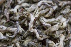 Wysuszony herbacianych liści zbliżenie jako tło Zdjęcie Stock