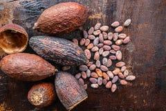 Wysuszony kakao i kakao ziarna na drewnianym tle obraz royalty free