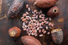 Wysuszony kakao i kakao ziarna na drewnianym tle obrazy stock