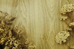 Wysuszony kwiat na drewnianym tle Obrazy Stock