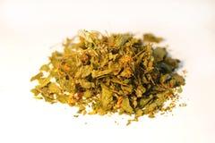 Wysuszony medicative ziele Ja chistotet Zdjęcie Stock