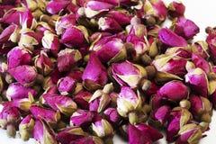 Wysuszony różany kwiatów pączków zakończenie Obraz Royalty Free