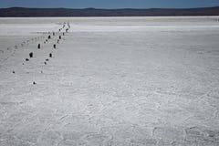 Wysuszony słone jezioro Fotografia Royalty Free