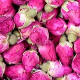 Wysuszony wzrastał kwiat tekstury tła zbliżenie obraz royalty free