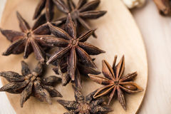 Wysuszony zielarski kolekcja set mieszanka suchy rośliny ziarno ziołowy Fotografia Stock