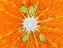wyszczególnia makro- pomarańcze Obraz Royalty Free