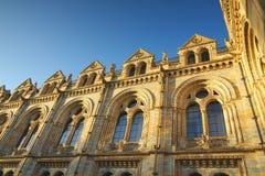 wyszczególnia historii London muzealnych krajowych okno Fotografia Royalty Free