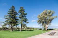 Wytwórnia win Ogrodowy Mendoza Argentyna Obraz Stock