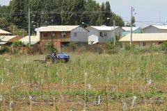 Wytwórnia win Santa Cruz Chile obrazy stock
