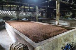 Wytwórnia win w gaomiao miasteczku, Sichuan, porcelana zdjęcie stock