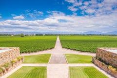 Wytwórnia win w Mendoza, Argentyna Obraz Royalty Free