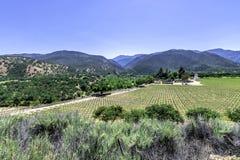 Wytwórnia win wzdłuż Monterey okręgu administracyjnego drogowej autostrady G16 Zdjęcie Royalty Free