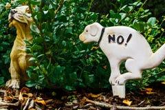 Wyzywający pies obraz royalty free