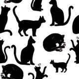 Wzór z wizerunkiem czarni koty dla drukować, tło, zwierzęta domowe zdjęcie stock