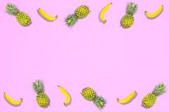 Wzór świeża lato cukierki owoc dla wakacyjnego pojęcia mieszkania nieatutowego Obrazy Stock