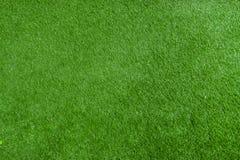 Wzór świeży zielony gazon obraz royalty free