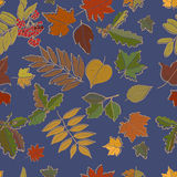wzór bezszwowy jesiennych liści royalty ilustracja