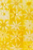 Wzór ciency plasterki persimmon Obrazy Royalty Free