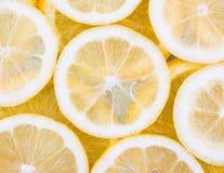 Wzór cytrus owoc Fotografia Stock