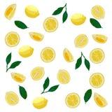 Wzór cytryny w pastelowych kolorach Jaskrawy, realistyczny, soczysty fotografia stock