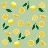Wzór cytryny w pastelowych kolorach Szary tło, żółte cytryny zdjęcie stock