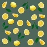 Wzór cytryny w pastelowych kolorach Szary tło, żółte cytryny fotografia stock