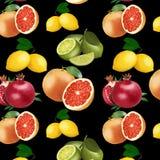 Wzór jaskrawa owoc na czarnym tle royalty ilustracja