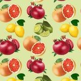 Wzór jaskrawa owoc na lekkim tle ilustracji