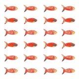 Wzór kolorowa ryba royalty ilustracja