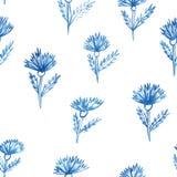 Wzór, kwiaty, aquarelle chabrowy Zdjęcia Stock