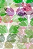 wzór liści Obraz Stock