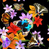 Wzór motyle i kwiaty na czarnym tle royalty ilustracja