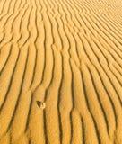 Wzór na piaskach Zdjęcie Stock