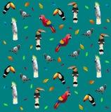 Wzór Niski poli- kolorowy birdpigeon, dzioborożec, papuga, pieprzojad, kakadu na błękita plecy ziemi, zwierzęcy geometryczny poję royalty ilustracja