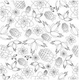 Wzór od jagod i kwiatów Obrazy Royalty Free