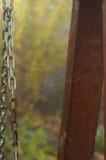 Wzór pajęczyny na przykuwa huśtawkę w ogródzie w jesieni mi Obraz Royalty Free