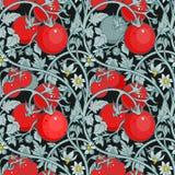 Wzór pomidor gałąź w ogródzie czarna czerwony Obrazy Royalty Free