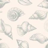 Wzór seashells Obraz Royalty Free