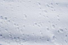Wzór w śniegu Zdjęcie Royalty Free
