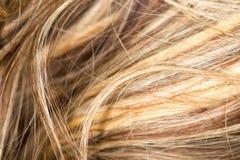 Wzór włosy Fotografia Royalty Free