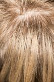 Wzór włosy Fotografia Stock
