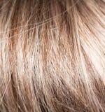 Wzór włosy Zdjęcia Stock